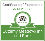 2013 Certificate of Excellence-Trip Advisor